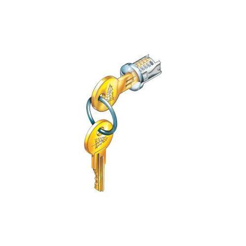 Compx C200LP-KA103T-8 Timberline Lock Plug Old English